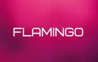 FLAMINGO  бутик дизайнерской одежды